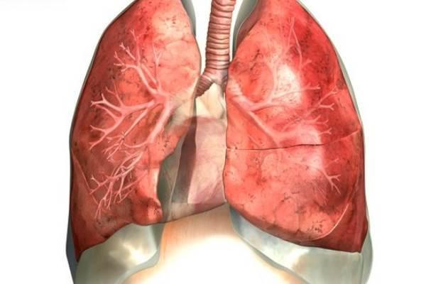 Пневмосклероз: 9 недугов, приводящих к пневмосклерозу, ведущие симптомы, 3 основных принципа лечения, методы профилактики и возможные осложнения