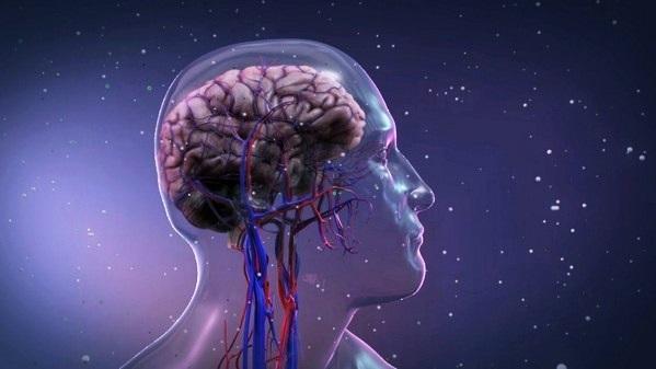 Гипоксия: 7 видов кислородного голодания, последствия, первая помощь