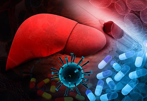 Гепатит В: 7 явных симптомов, обзор принципов лечения и направлений профилактики