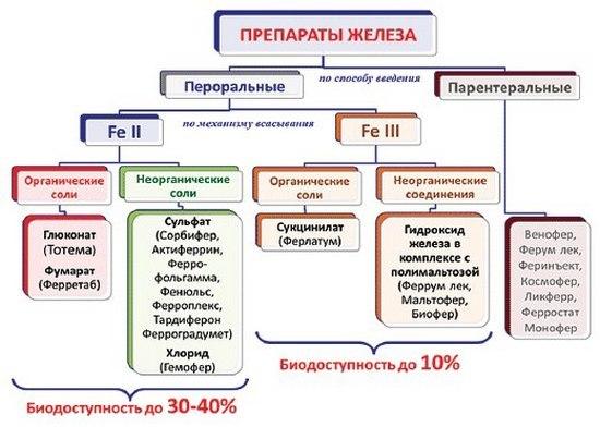 Железодефицитная анемия: ТОП-9 препаратов железа и 10 продуктов, богатых железом