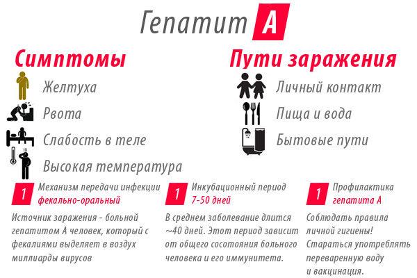 Тимоловая проба: 4 преимущества применения, проведение, норма, 15 причин превышения нормы
