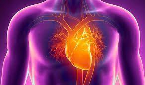 Аритмия: обзор 4 групп препаратов, рекомендации практикующего кардиолога и современные методы лечения