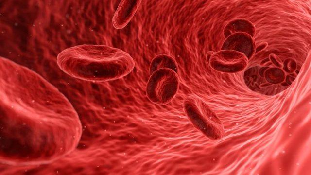 Мочевая кислота: норма и отклонения, 2 причины повышения, подготовка к анализу